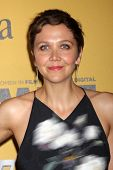 LOS ANGELES - JUN 11:  Maggie Gyllenhaal at the Women In Film 2014 Crystal + Lucy Awards at Century