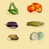 Pieces Of Vegetables: Peas, Cabbage, Potatoes, Corn