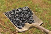 Shovel of Coal