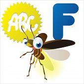 picture of fireflies  - F is for Firefly - JPG