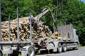 Man With Special Equipment Load Truck With Logs