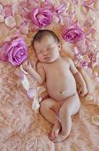 Newborn baby sleeping next to roses and petals on soft fur fabric
