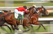 Blur Horse Race