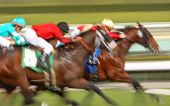 Abstract Blur Horse Race