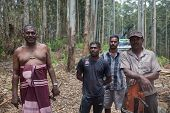 ELLA, SRI LANKA - MARCH 2, 2014: Group of timber industry workers posing for camera. Deforestation is one of the biggest environmental problems in Sri Lanka.