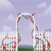 Arbor with roses