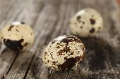 Quail Eggs On Old Wooden Planks