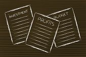 Business Documents: Investment, Profits, Budget