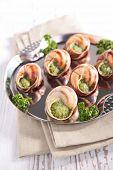 snail with butter and parsley