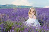 Sweet Girl In Lavender Field