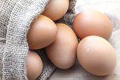 Eggs In Sack Bag