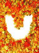 Flowers letter U.