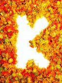 Flowers letter K.