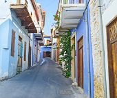 The Colorful Street
