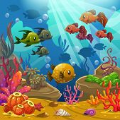 pic of shell-fishes  - Underwater world - JPG