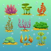 picture of algae  - Cartoon algae vector set - JPG