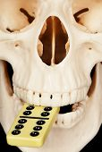 Human Skull And Dominoes