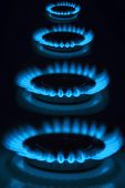 picture of flames  - gas burner flame energy natural gas stove gas industry - JPG