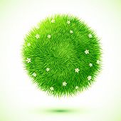 Green fluffy grass ball with chamomiles
