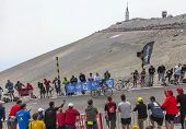 The Cyclist Thomas Voeckler Climbing Mont Ventoux