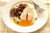Poached egg with roasted mushrooms