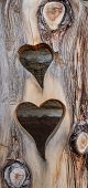Two hearts cut in wood