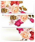 Floral Backgrounds Set With Roses