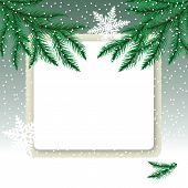 Frame on the snowdrift and fir tree branches.