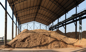 image of sorghum  - Bagasse is the fibrous matter that remains after sugarcane or sorghum stalks are crushed to extract their juice - JPG