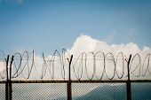 picture of barbed wire fence  - barbed wire fence razor blue sky clouds - JPG