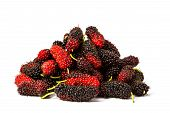 pic of mulberry  - all fresh organic mulberry on white background - JPG