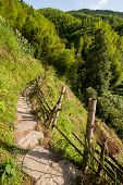 foto of old stone fence  - Chinese mountains and stone pathway with wooden fence - JPG