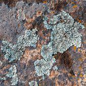 stock photo of granite  - Natural granite stone texture background - JPG