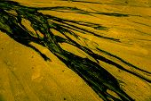 picture of polluted  - abstract of splash oil from water drain on sand beach make pollution for environment - JPG