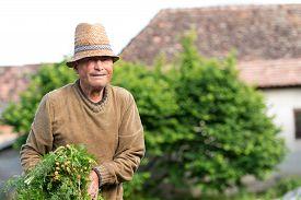 pic of farmer  - Portrait of a smiling farmer - JPG