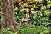 Fairy'S Garden Chair Next To Old Tree