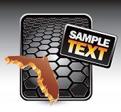 forma de estado de Florida no banner do hexágono