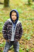 Early Fall. Small Boy In Fall. Small Child In Casual Outfit Outdoor. Adorable Boy In Hoodie, Fall Fa poster