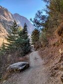 Narrow Trail In The Mountains Of Nepal. Trekking Trail Of Manaslu Conservation Area In Nepal. poster