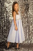 Little Princess In Beautiful Dress. Little Princess Pose On Silver Background poster