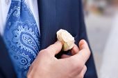 Groom Correcting Rose In Buttonhole