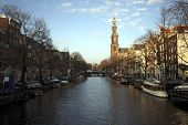 View on the Westerkerk in Amsterdam the Netherlands