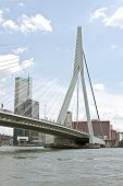 The Erasmus Bridge in Rotterdam the Netherlands