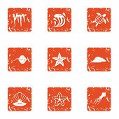 Starfish Icons Set. Grunge Set Of 9 Starfish Icons For Web Isolated On White Background poster