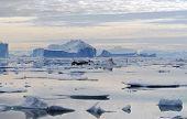 Northeast Greenland Icebergs