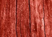 Coral Color Planked Wood Texture. Surface Of Wood Plank Background. Wooden Background. Trendy Backgr poster