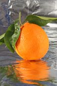 Orange. Orange Fruit on Silver Foil Background with reflections.  Room for text. Citrus Fruit.    poster