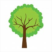 Tree With Leaves. Tree Icon Isolated On White Background. Tree Icon Simple Sign. Tree Icon Trendy An poster