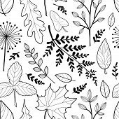 Vector Seamless Pattern With  Hand Drawn Fall Leaves. Autumn Mood. Floral Graphic Design.  Hand Draw poster