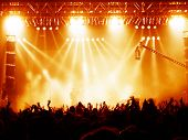 image of pop star  - Cheering crowd at concert musicians on the stage - JPG